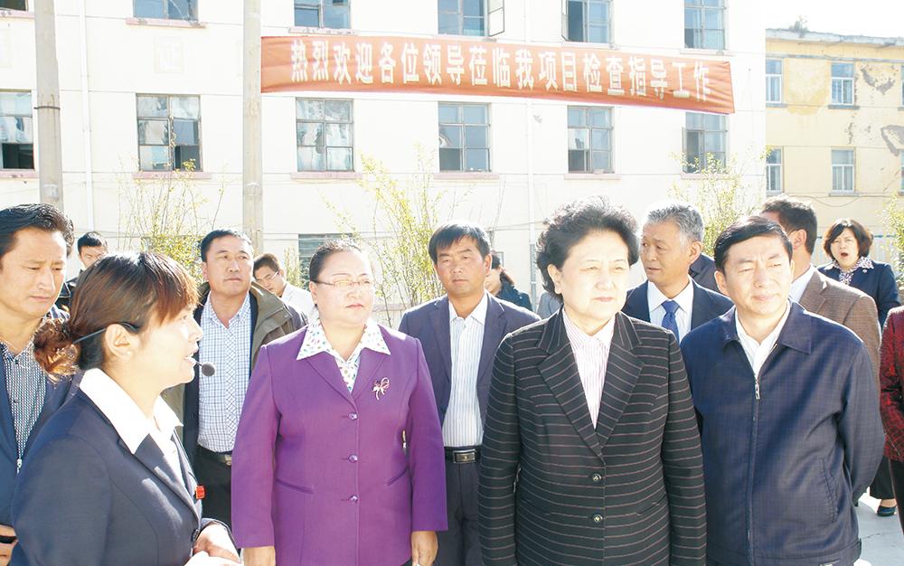 时任中央政治局委员,国务院副总理、党组成员刘延东视察湖北卓越集团青海项目部